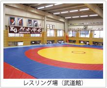 レスリング場(武道館)
