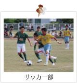 サッカーで泣いて、サッカーで笑って。昨日の自分に負けたくない君、光星高校サッカー部で共に頂点を目指そう !